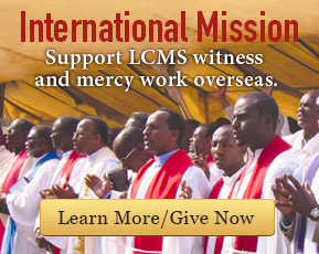 International Mission - Support LCMS witness and mercy work overseas